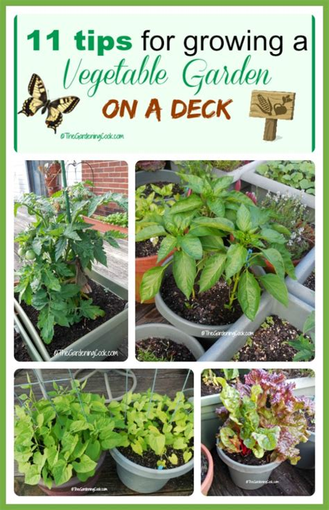 tips for vegetable garden 11 tips for growing a vegetable garden on a deck the