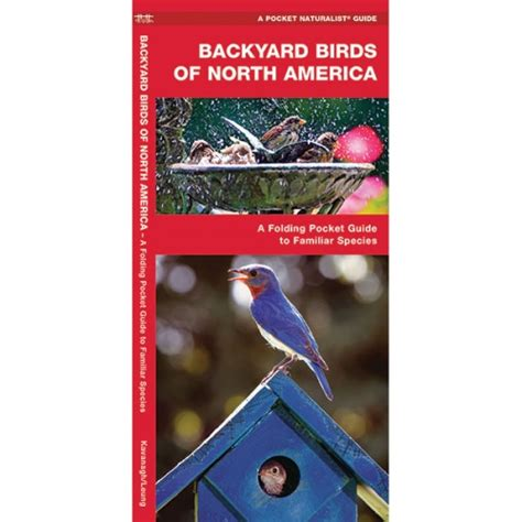 Backyard Birds Of America by Backyard Birds Of America Pocket Naturalist Guide