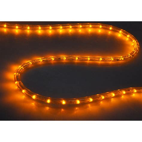 rope lights for outdoors delight 50 led rope light home in outdoor