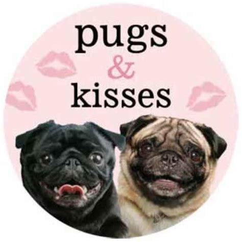 pugs n kisses files northern new jersey pug extravaganza ramsey nj meetup