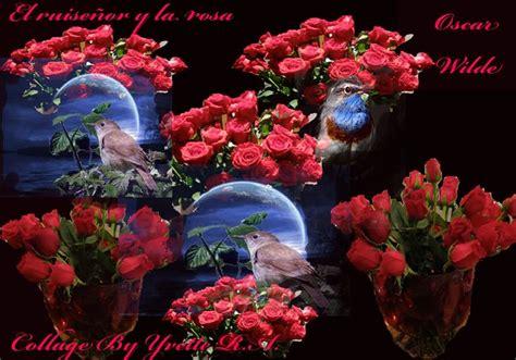 imagenes de rosas con espinas 129 best images about places to visit on pinterest