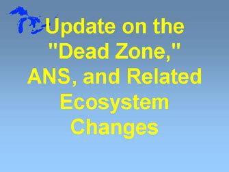 Ans Update by Weekly News