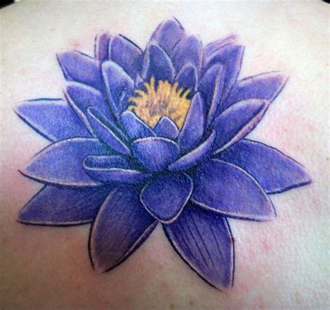 water lily tattoo designs images by brantley compi