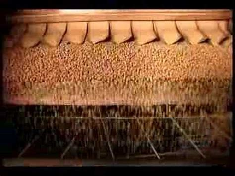 how its made dogs how its made dogs food