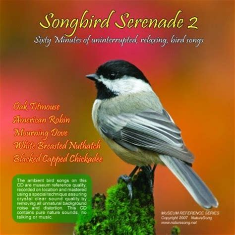 best bird song cd s bird song cd s songbird serenade 2