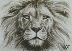 Easy Drawings Of Lions » Ideas Home Design