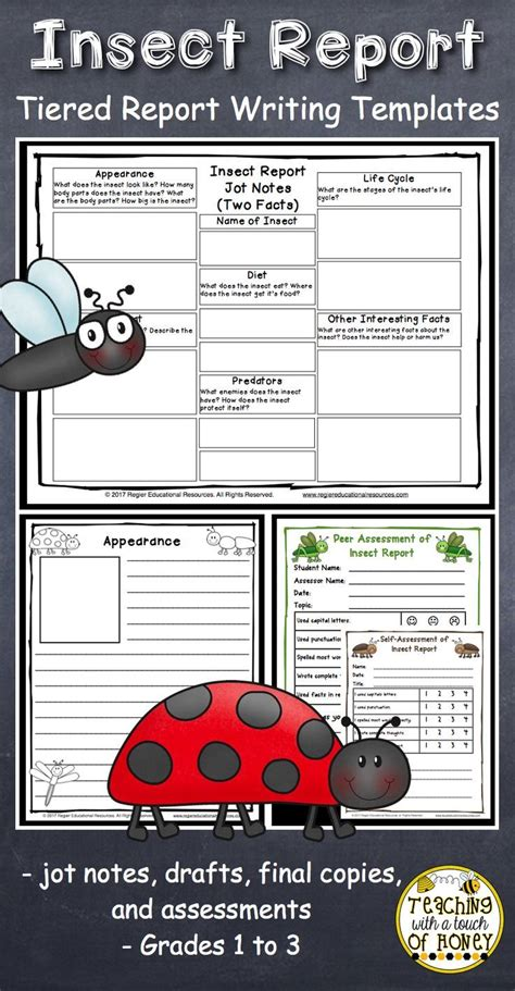 Insect Report Template 819 Best Insect Ideas Images On Handwriting