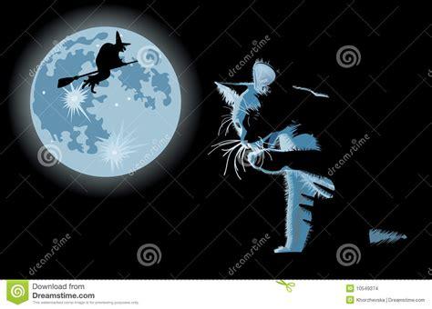 la luna e i b00detivmi gatto e strega contro la luna piena illustrazione vettoriale illustrazione di solitario sogno