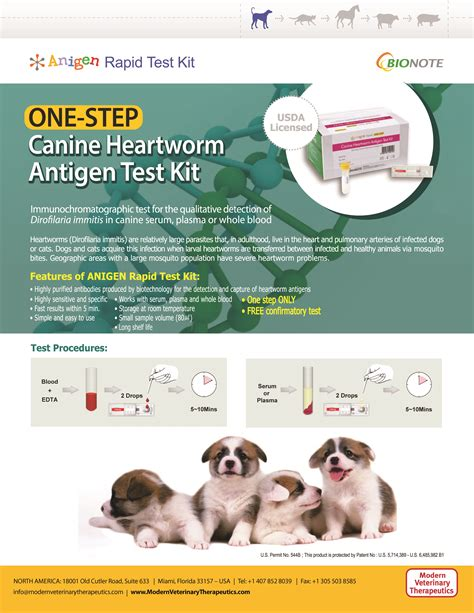 heartworm test for dogs one step canine heartworm antigen test kit dan and associates inc