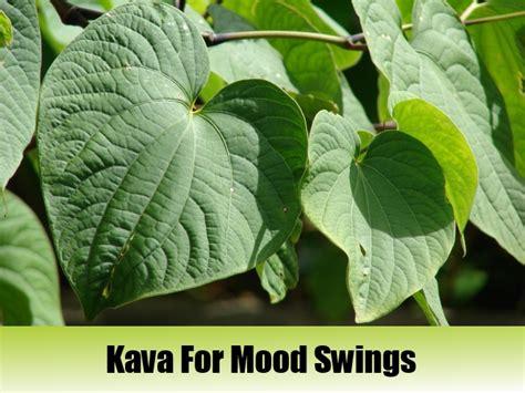 natural medicine for mood swings herbal remedies for mood swings 28 images 5 top herbal