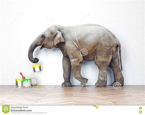 elephant with paint cans stock photo image of 61675640
