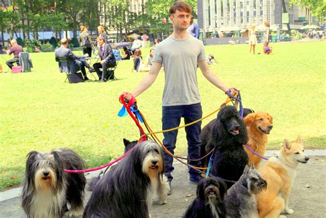 to the dogs daniel radcliffe walker