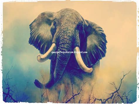 imagenes de la familia hindu que significa so 209 ar con elefantes que significa so 241 ar con