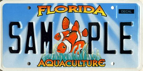 Florida Dmv Vanity Plates by Aquaculture Plate