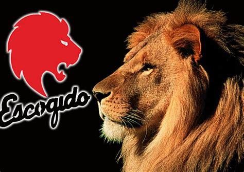 imagenes graciosas leones del escogido el rugir de los leones del escogido