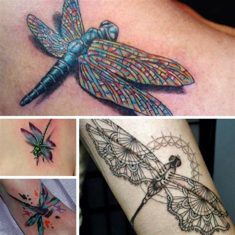 dragonfly tattoo shop the most dragonfly designs inkdoneright