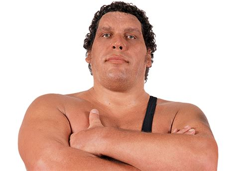 And The Giants wweshop andre the official merchandise