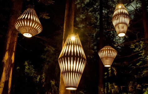 david trubridge lights   magical redwood tree walk