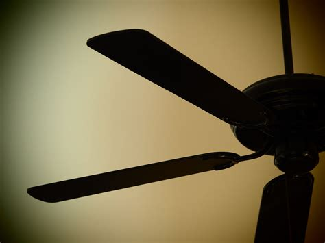 how to deal with a ceiling fan that is not spinning