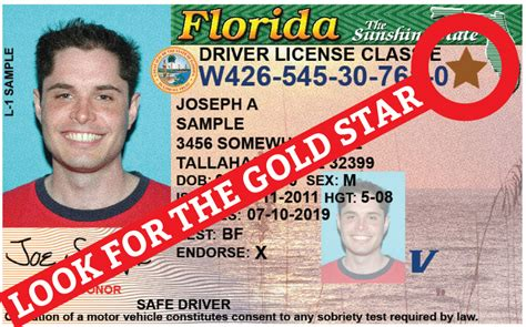 Florida Drivers License Office by Driver License Orlando Fl Office Bertylbible