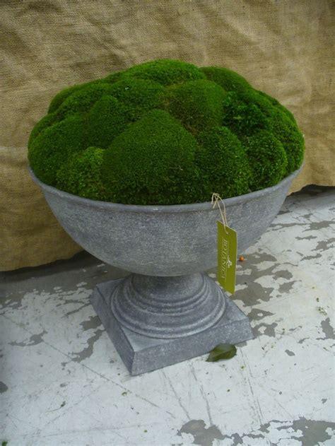 Zinc Garden Planters by 1000 Ideas About Zinc Planters On Industrial