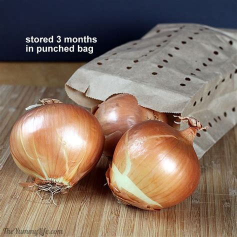 Shelf Of Onions by How To Store Onions Garlic Shallots