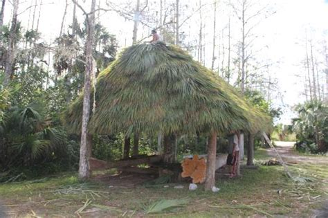 Chickee Hut Chickee Hut Re Roofing Picture Of Ah Tah Thi Ki Museum