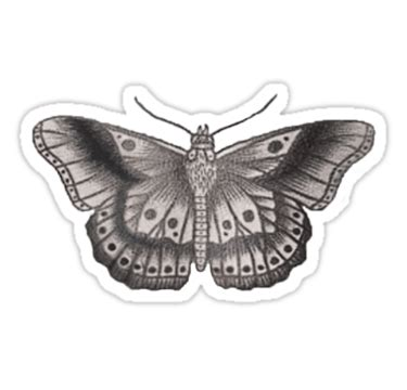 harry tattoo png all the love in the world