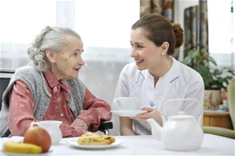 nutrition for alzheimer's patients: are feed| shield