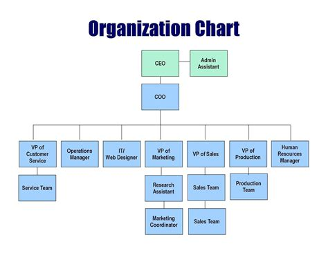 companies structure hospital organizational chart template success