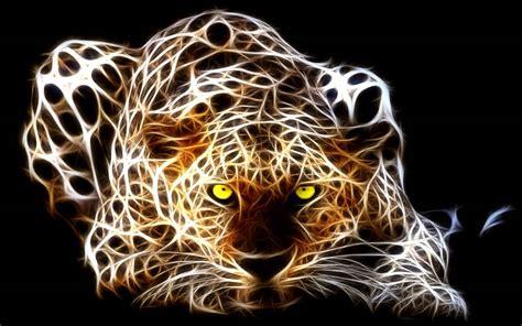 wallpaper abstract animal tiger super photo shoot lying on single abstract animal