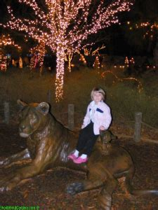 Riverbanks Zoo Shout About South Carolina Travel Family Riverbanks Lights At The Zoo