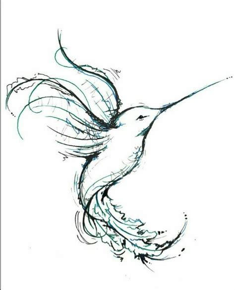 libro bird art drawing birds humming bird drawing beautiful tattoo ideas humming birds bird and tattoo