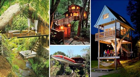 17 of the most amazing treehouses from around the world bored panda most amazing tree houses in 28 images the most amazing