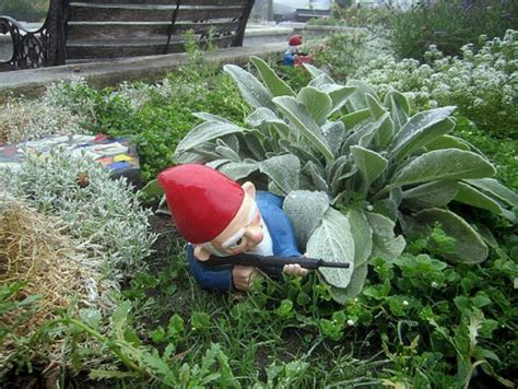 garden gnomes with guns gnome w gun gourdgeouse gardens features pinterest
