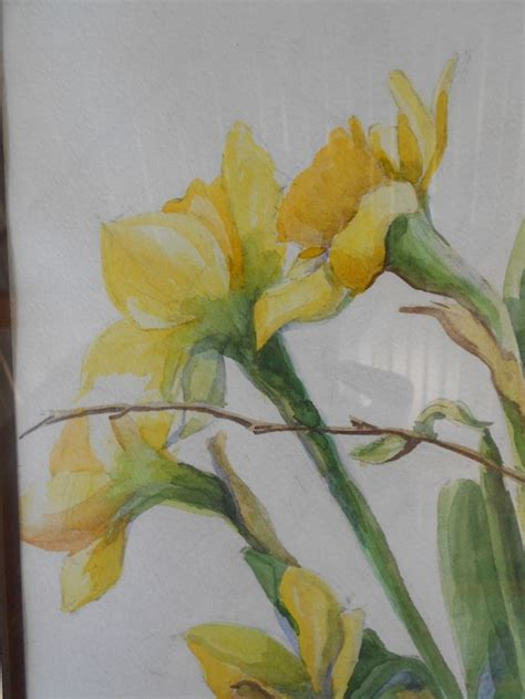 watercolor daffodil tutorial 17 best images about watercolor flowers daffodils on