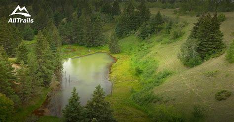 trails  spruce woods provincial park alltrailscom