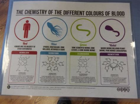 different colors of blood different colors of blood and why picture of dupont