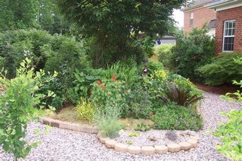 backyard grass alternatives 17 best images about no mow yard on pinterest gardens