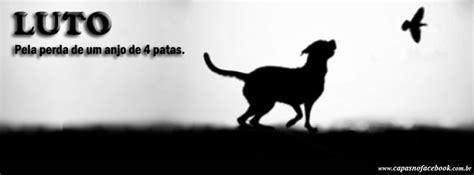imagenes de luto canino trends of me luto pela perda de um anjo de 4 patas
