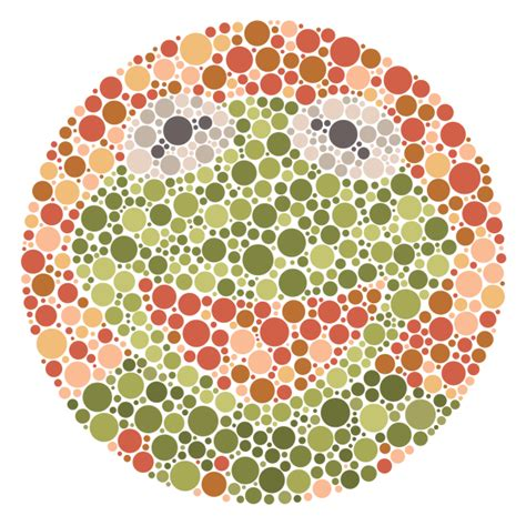 Color Blind it s not that easy being seen chayground kermit