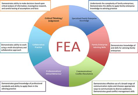 fea competency map