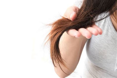 Hair Dryer Hair Damage 9 ways to fix damaged hair national globalnews ca