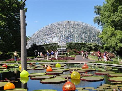 Botanical Gardens St Louis by 25 Best Ideas About Missouri Botanical Garden On
