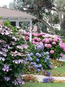 Shrub Garden Ideas Flowering Shrubs For Shade Gardens Hgtv