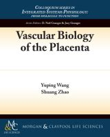 placental blood circulation vascular biology of the