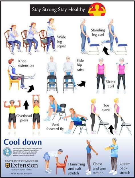 low impact exercises seniors can do to maintain or