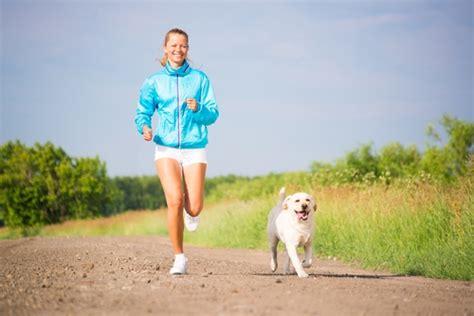 imagenes animales haciendo ejercicio dicas de esportes para fazer com o seu cachorro vilamulher