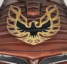 Firebird Aufkleber Motorhaube by 1977 Pontiac Firebird Trans Am Hood Decal Detail Passion