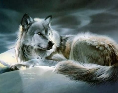 wolf painting wolf anime wallpaper animals wiki pictures